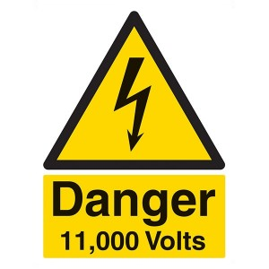 Danger 11,000 Volts - Portrait