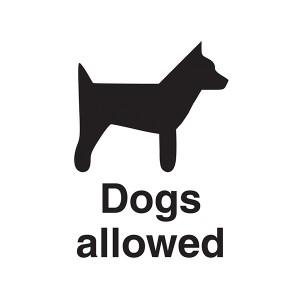 Dogs Allowed - Portrait
