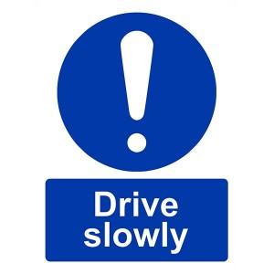 Drive Slowly - Portrait