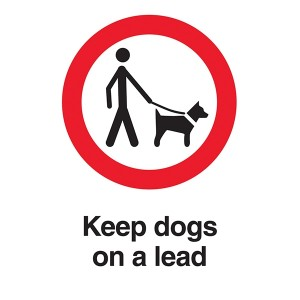 Keep Dogs On A Lead - Portrait