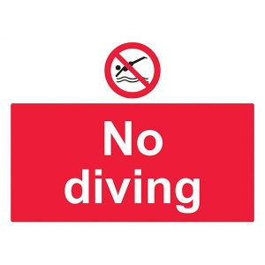 No Diving - Landscape - Large