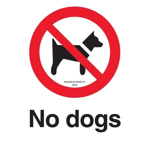 No Dogs - Maximum Penalty £500 - Portrait