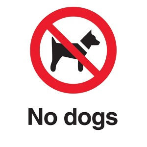 No Dogs - White Background - Portrait