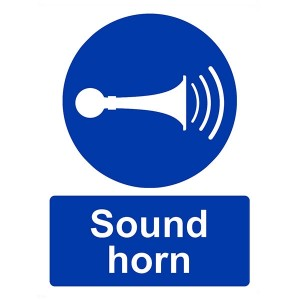 Sound Your Horn - Portrait