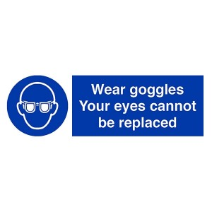Wear Goggles Your Eyes Cannot Be Replaced - Landscape
