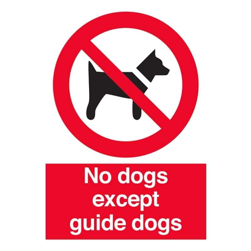 No Dogs Except Guide Dogs Portrait